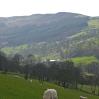 Looking along Dyffryn Crawnon valley
