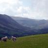 Looking along the Dyffryn Crawnon valley from Tor-y-Foel