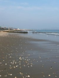 A view along the beach at Shanklin, IoW