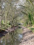 Monmouthshire and Brecon Canal - still with no water