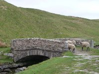 The bridge over Ling Gill