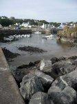 Portpatrick harbour