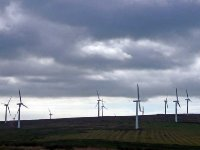 Another windfarm