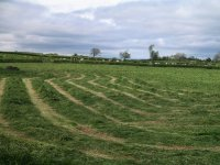 Coast to Coast - Day 11 - the farmers were busy cutting the grass for silage