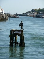 The view south from the swing bridge at Newhaven