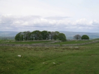 Coast to Coast - Day 7 - the view down to Kirkby Stephen