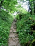 Coast to Coast - Day 10 - the staircase through the wood
