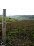 Coast to Coast - Day 13 - the valley to the north of Glaisdale Moor
