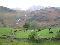 Coast to Coast - Day 3 - view at the start of the Grasmere valley