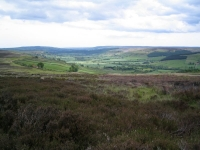 Coast to Coast - Day 13 - the valley to the south of Glaisdale Moor