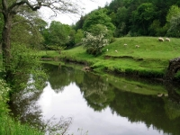 Coast to Coast - Day 14 - the river out of Glaisdale