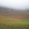 Coast to Coast - Day 3 - misty ridges, but the bracken was glowing