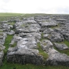 Coast to Coast - Day 6 - first bit of limestone pavement