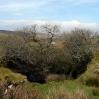 Old mine workings near Minions on Bodmin Moor