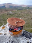 Welsh Toffee Waffles - normally have a short lifespan in the wild as they are often bottom of the food chain