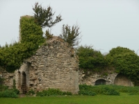 Remains of an old abbey