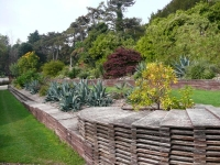 Ventor Botanic Garden, IoW