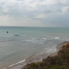 Hanover Point Fossil Forest emerging after high tide