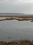 The marshland at Pegwell Bay