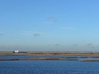 Cliffe RSPB Reserve ponds