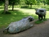 Yorkshire Sculpture Park, June 2007. Buffalo : Lying and Standing, 1988 Bronze. Elisabeth Frink
