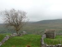 Farmland above Thwaite