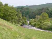 The River South Tyne at the start of day 14 near Garrigill