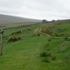 Heading north out of Keld, over Black Moor, towards Tan Hill