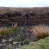 The peat of Stonesdale Moor