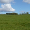 Hannah Hauxwell's Meadow
