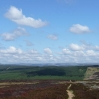 Heading down to the forests near Kielder Water