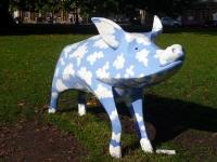Sky Blue Pig by John Garrihy