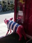 Bath Rugby Pig by Elizabeth Knott