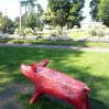 People's Pig by The people of Bath