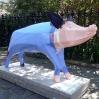 Pig in a Poke by Jane Callan