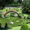 Japanese garden at Huntington Botanic Gardens