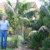 John Rees in his fantastic garden of palms, aloes and cycads