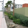 New landscaping with sustainable drainage around UCSB accommodation blocks