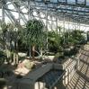 Sheffield Botanic Garden