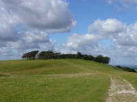Chanctonbury Ring