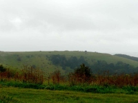 The Iron Age Fort in the mist at Old Winchester Hill