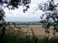 A view to the north near Winchester