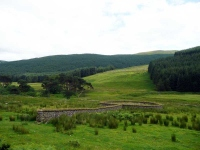 An old sheep pen in the valley below Lochy Law