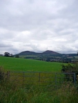 Looking back towards the Eildon Hills