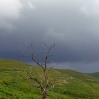 A gathering storm blowing in towards St Mary's Loch at the end of day 7