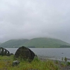 Shinglehook by Matt Baker on the shore of St Mary's Loch