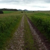 The Southern Upland Way follows the line of an old roman road for quite a way from Melrose to Lauder