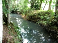 The River Ouse running alongside Rivers Wood