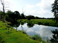 The River Ouse to the north of Barcombe Mills