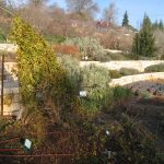 Jerusalem Botanic Garden